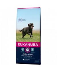 Eukanuba adult taglia grande large da kg 12