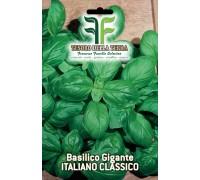 """Basilico """"Gigante Italiano Classico"""""""
