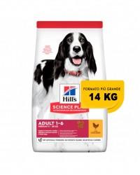 Hill's Science Plan Canine Adult Advanced Fitness Medium con Pollo 14 kg secco ex 12 kg OFFERTA € 2,57 / kg !!