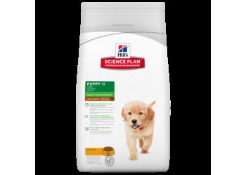 Hill's Science Plan Puppy Healthy Development Large Breed Chicken 11 Kg