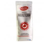 Farina Manitoba da 500 g